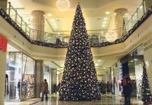 christmas trees 06