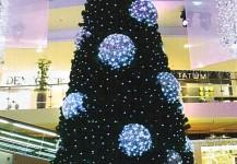 christmas trees 07