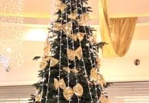 christmas trees 09