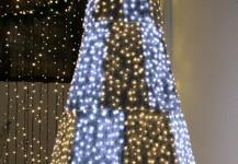 christmas trees 11
